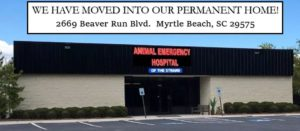 Animal Emergency Hospital of the Grand Strand