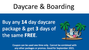 Kennel – Buy 14 Daycare or Get 3 Free